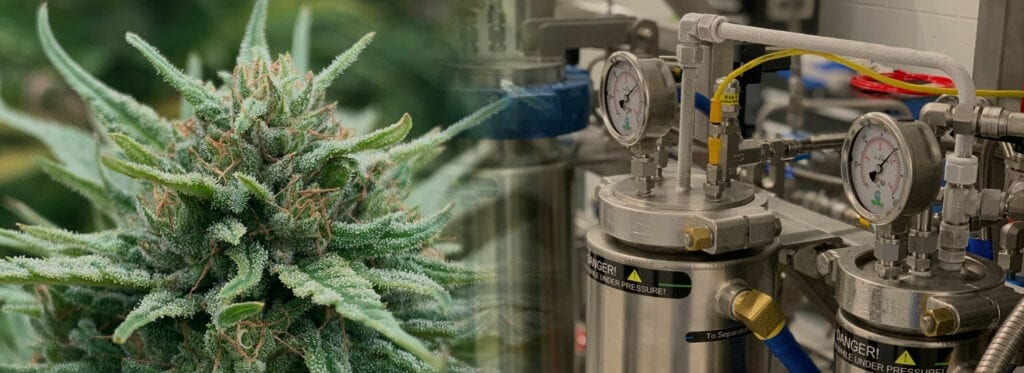 Hemp Plant fading into a CO2 Extractor.