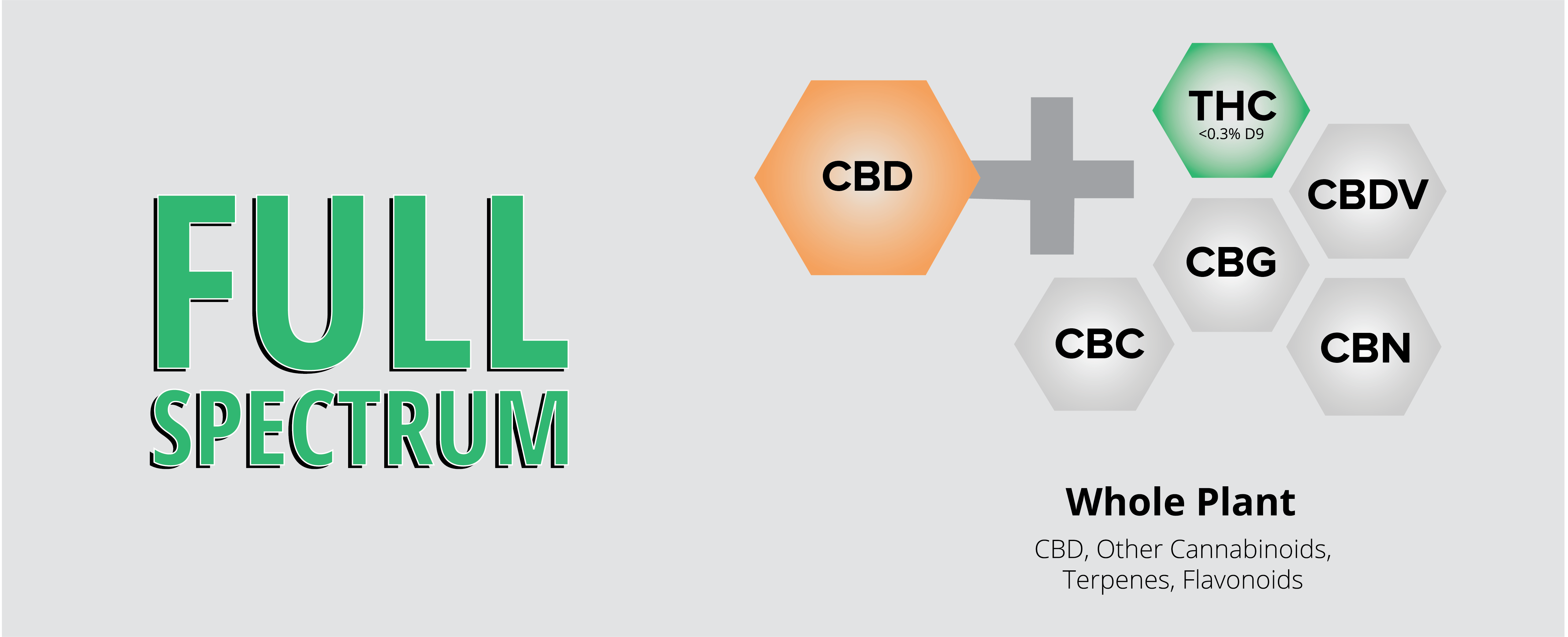 Full Spectrum Informational Chart with Cannabinoids
