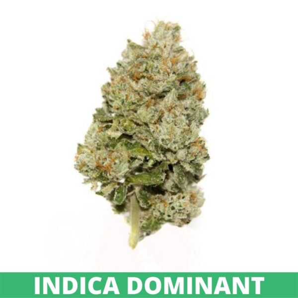 Pure Hemp Farms by Organic CBD Nugs premium light green delta 8 buds with light orange hairs, Girl Scout Cookies strain which is indica-dominant.